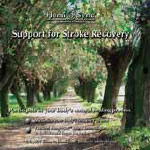 Support for Stroke Recovery